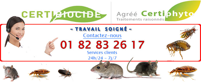 Insectes Clichy